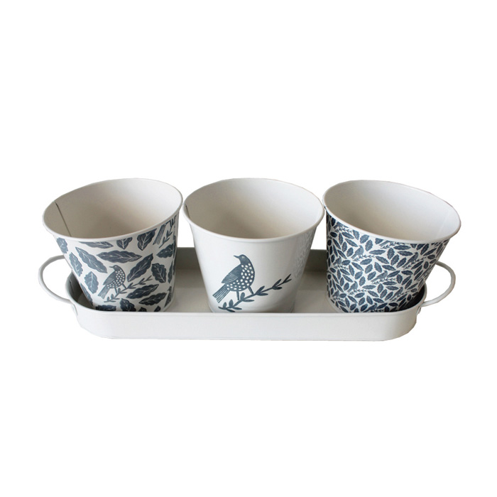 Songbird Grey Herb Pots Set 3 Sparkle Gift